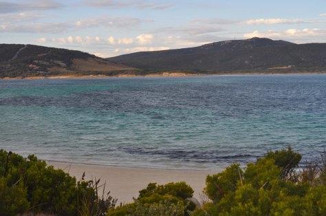 Bass Strait 2015-20-Roydon Island