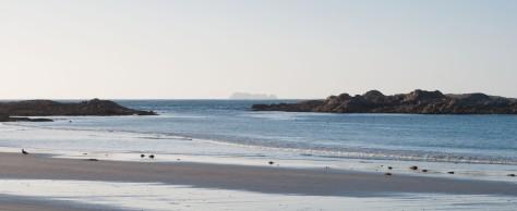Bass Strait 2015-33-Killiecrankie