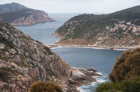 Bass Strait 2015-37-Erith Is