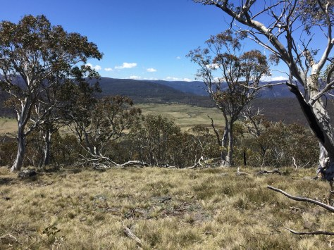 Bennison Plains and Shaws Creek in the background. From Mt Tamboritha.